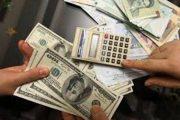 آزادسازی نرخ ارز در راستای سیاستهای شوک درمانی است