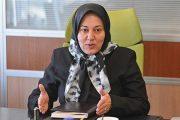 رییس کانون زنان بازرگان ایران مطرح کرد: برخی از قوانین دست بانوان را در اقتصاد بسته است/توانمندی شرط حضور پر رنگ زنان