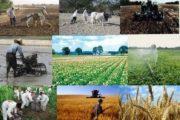 (روستا تعاون) طرح حمایتی دولت برای توانمندسازی روستائیان