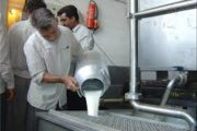 شیر خام گران شد، قیمت جدید ۱۴۴۰ تومان