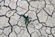 کشور وارد مرحله جدی و آشکار مشکل کم آبی شده است