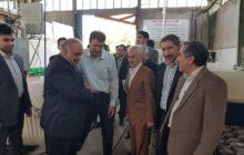 بازدید از 4طرح تولیدی و صنعتی تعاونی در کرمانشاه