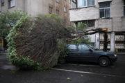 پایتخت یکشنبه طوفان شدیدتری را تجربه می کند