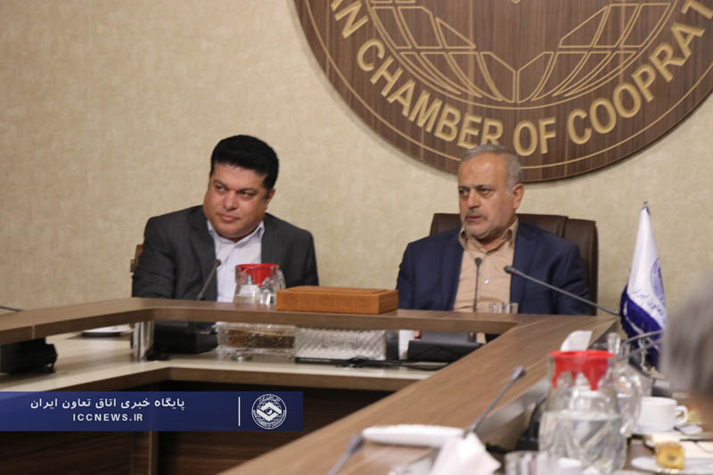 نقش بخش تعاون در فرآیند توزیع لاستیک با حضور رئیس کمیسیون اصل 90 بررسی شد