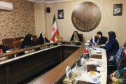 چهل و یکمین جلسه تخصصی کمیسیون بانوان اتاق تعاون برگزار شد