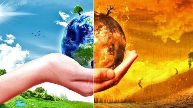 تعاونیها چگونه به تغییرات اقلیمی پاسخ میدهند؟