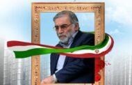 پیام تسلیت رئیس اتاق تعاون ایران به مناسبت شهادت دانشمند هسته ای دکتر محسن فخریزاده