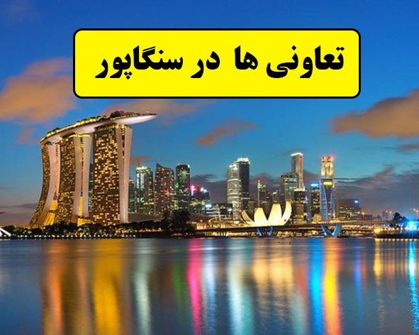 بررسی وضعیت تعاونی ها درسنگاپور